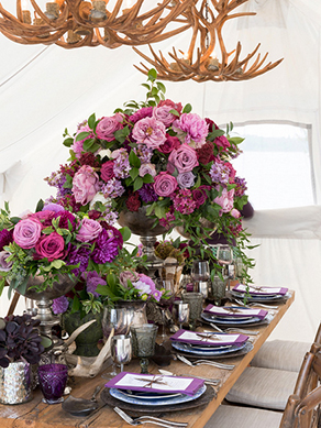 wedluxe-small