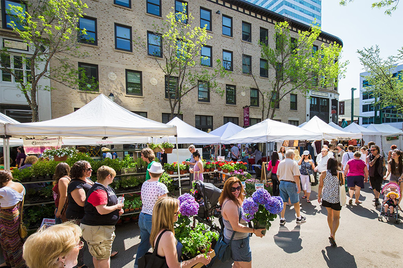 Edmonton's City Market Downtown is one of the best outdoor markets in Canada - a group of people wandering through a market