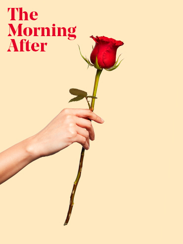 Woman's hand holding a red rose